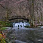 Vrelo Bosne,25.11 (1)